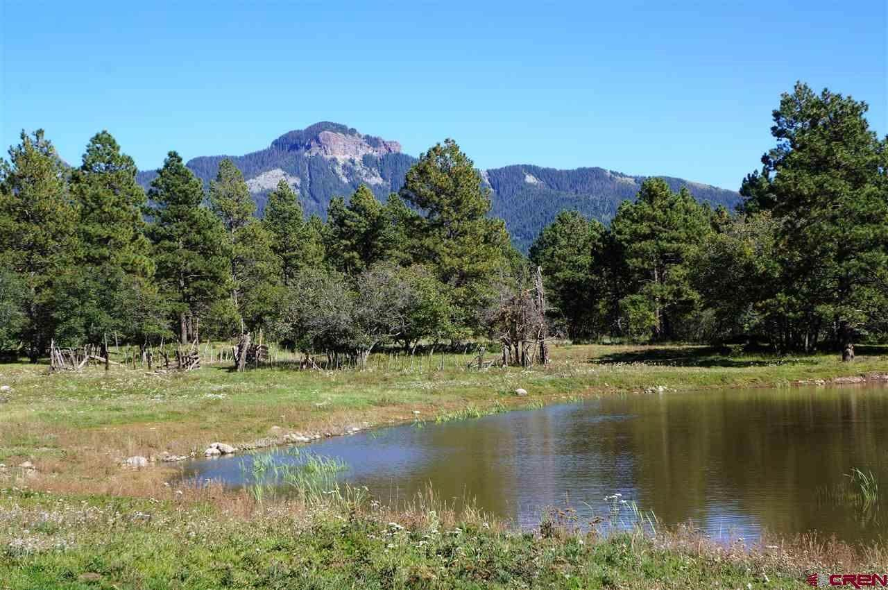 Single Family Homes for Active at 2132 Needles View Place Pagosa Springs, Colorado 81147 United States