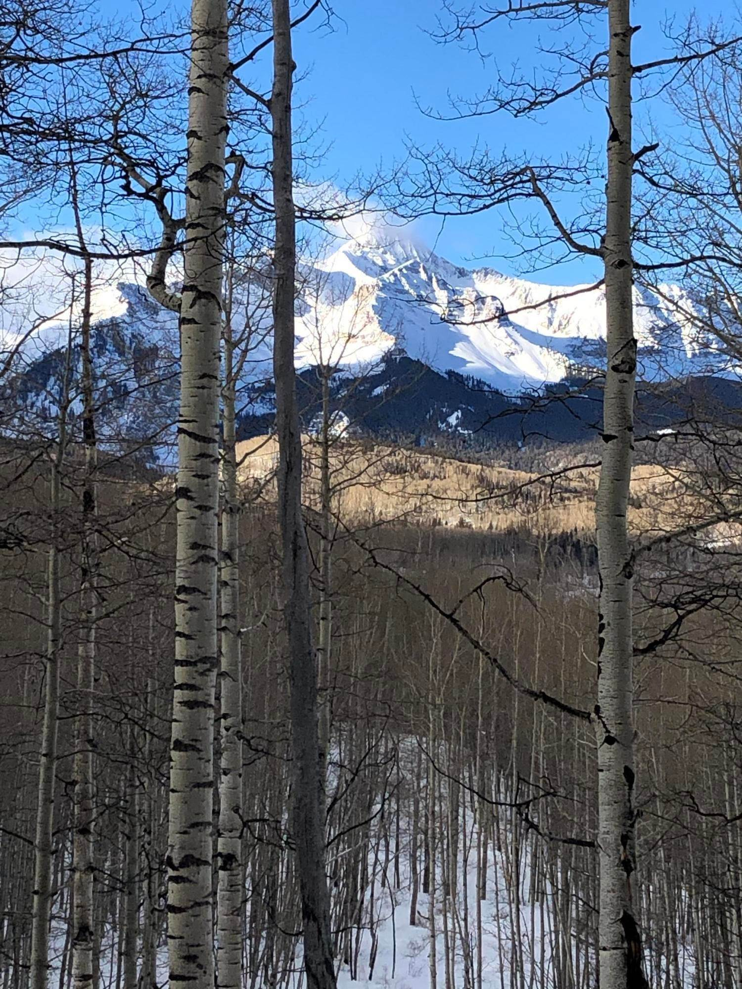 3. Land for Active at 8050 Preserve Drive Telluride, Colorado 81435 United States