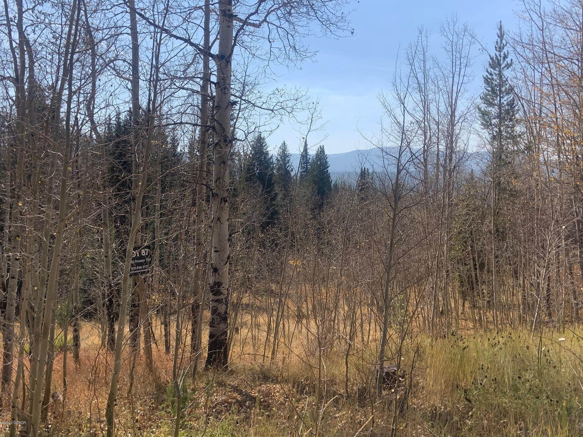 Vacant land for Active at 2060 PIONEER Trail Fraser, Colorado 80442 United States