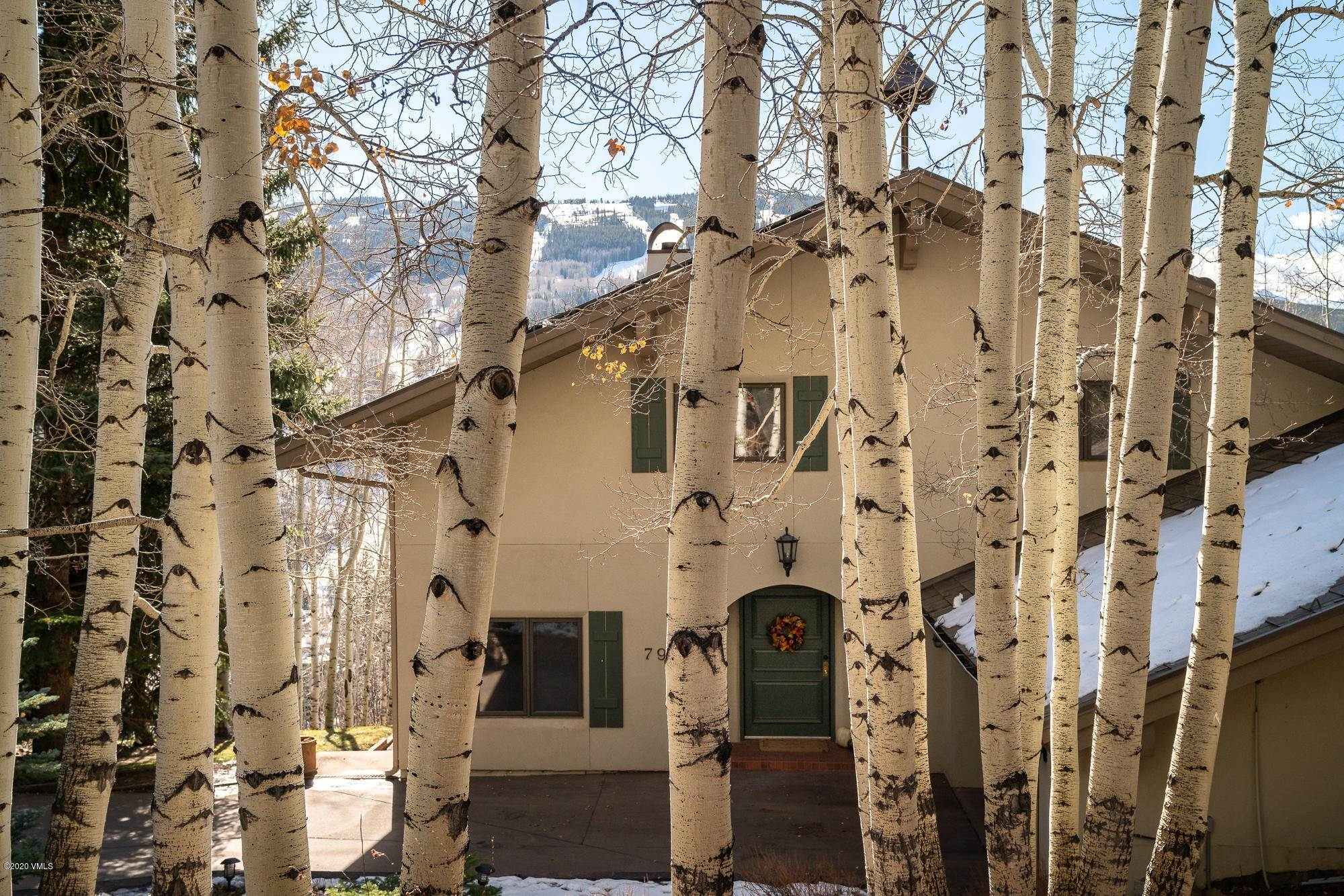 Single Family Homes for Active at 797 Potato Patch Drive Vail, Colorado 81657 United States