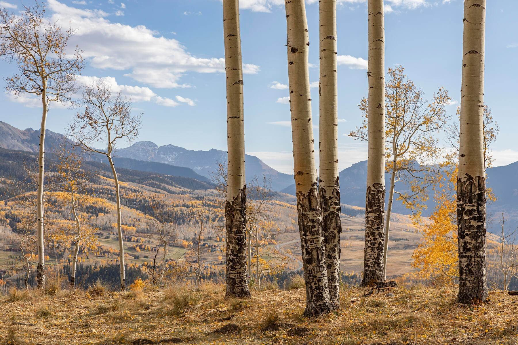 Land for Active at TBD Basque Boulevard, Lot 113 & 114A Telluride, Colorado 81435 United States