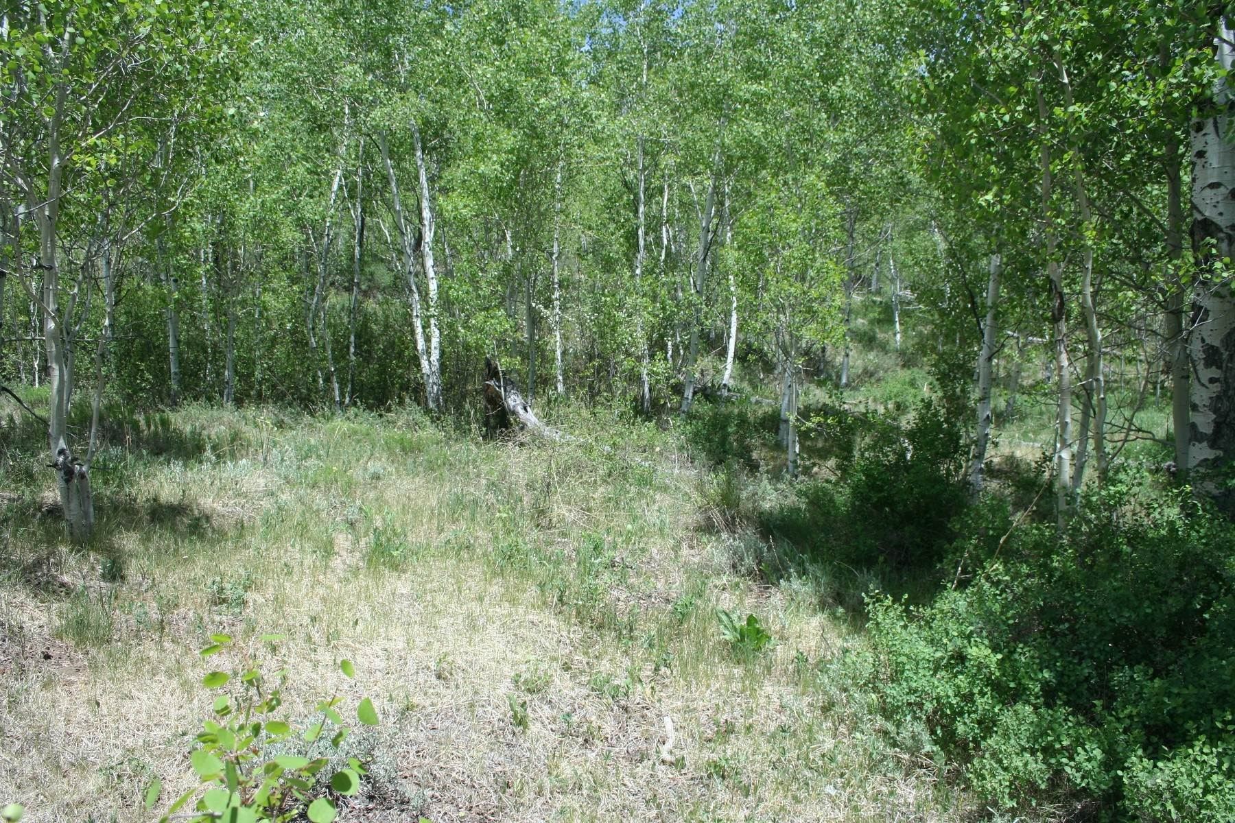 3. Land for Active at Attractive Homesite with Great Valley Views 97 Barbra Place Crested Butte, Colorado 81224 United States