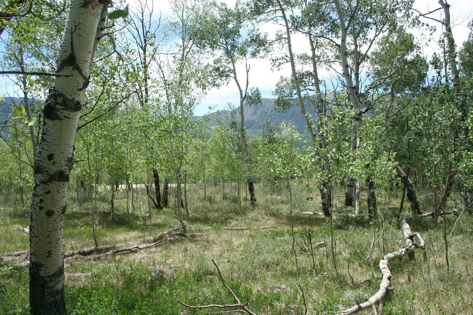 8. Land for Active at Attractive Homesite with Great Valley Views 97 Barbra Place Crested Butte, Colorado 81224 United States