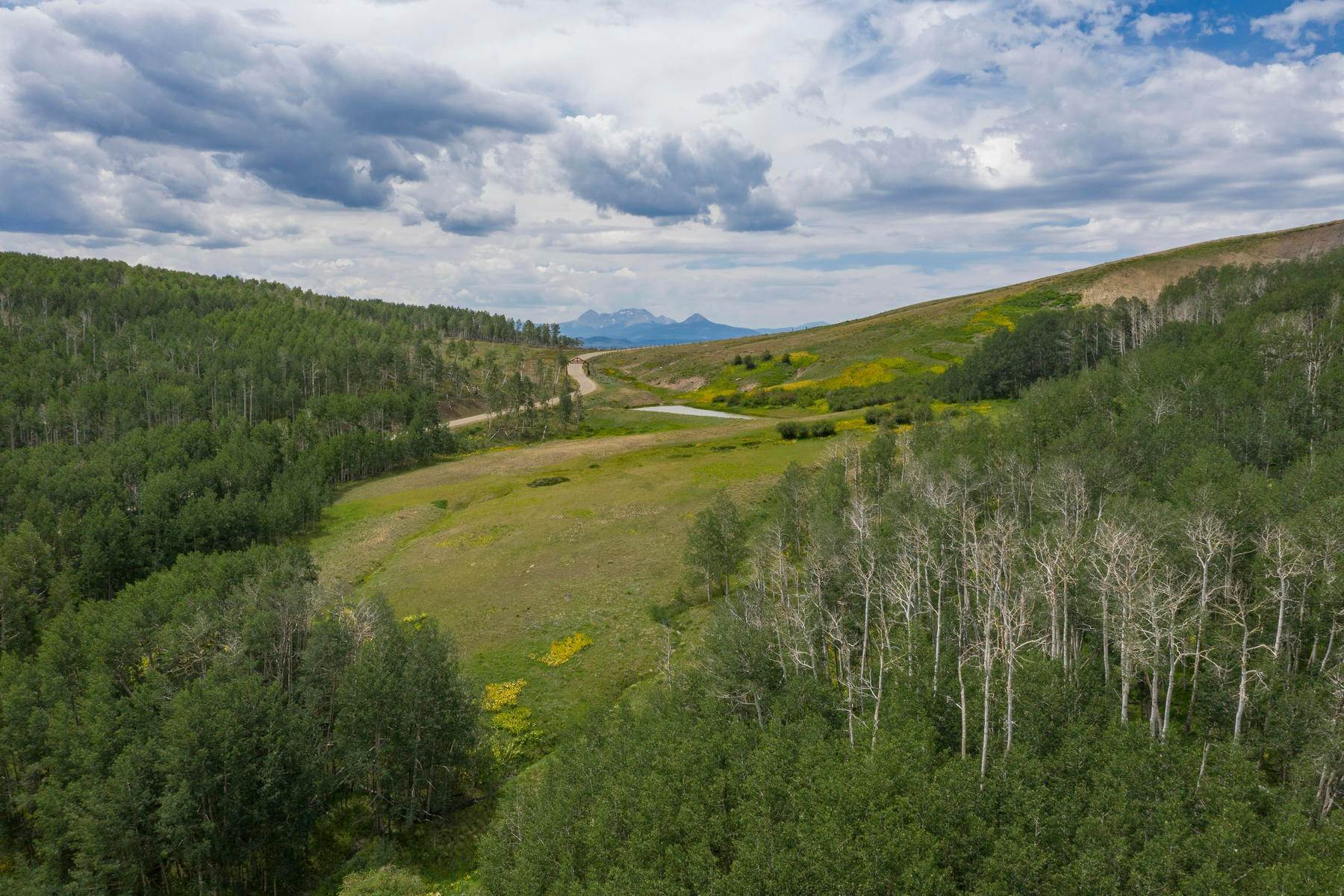 33. Single Family Homes for Active at 110 Wasatch Lane Ridgway, Colorado 81432 United States