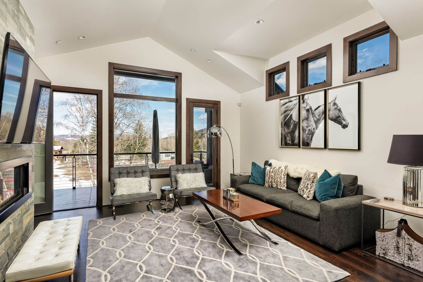 Duplex Homes for Active at Sunny Smuggler 505 Park Circle Aspen, Colorado 81611 United States