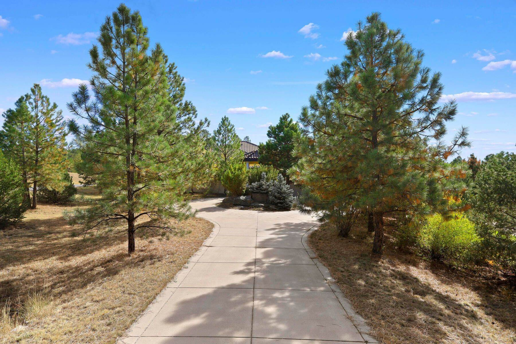 3. Single Family Homes for Active at 701 Golf Club Drive, Castle Rock, Co, 80108 701 Golf Club Drive Castle Rock, Colorado 80108 United States