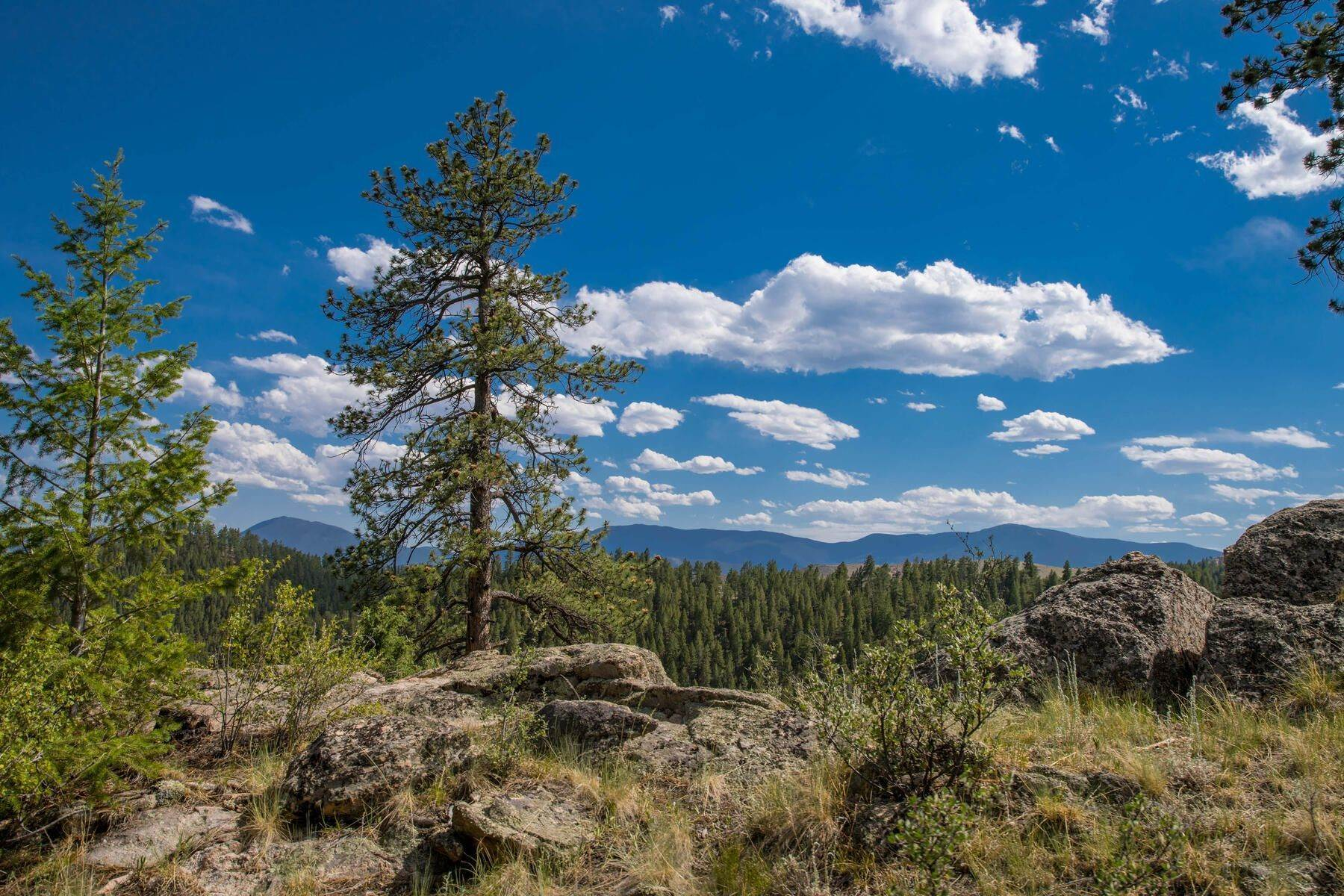 2. Land for Active at 14433 Lot 7 Elk Creek Road, Pine, Co, 80470 14433 Lot 7 Elk Creek Road Pine, Colorado 80470 United States
