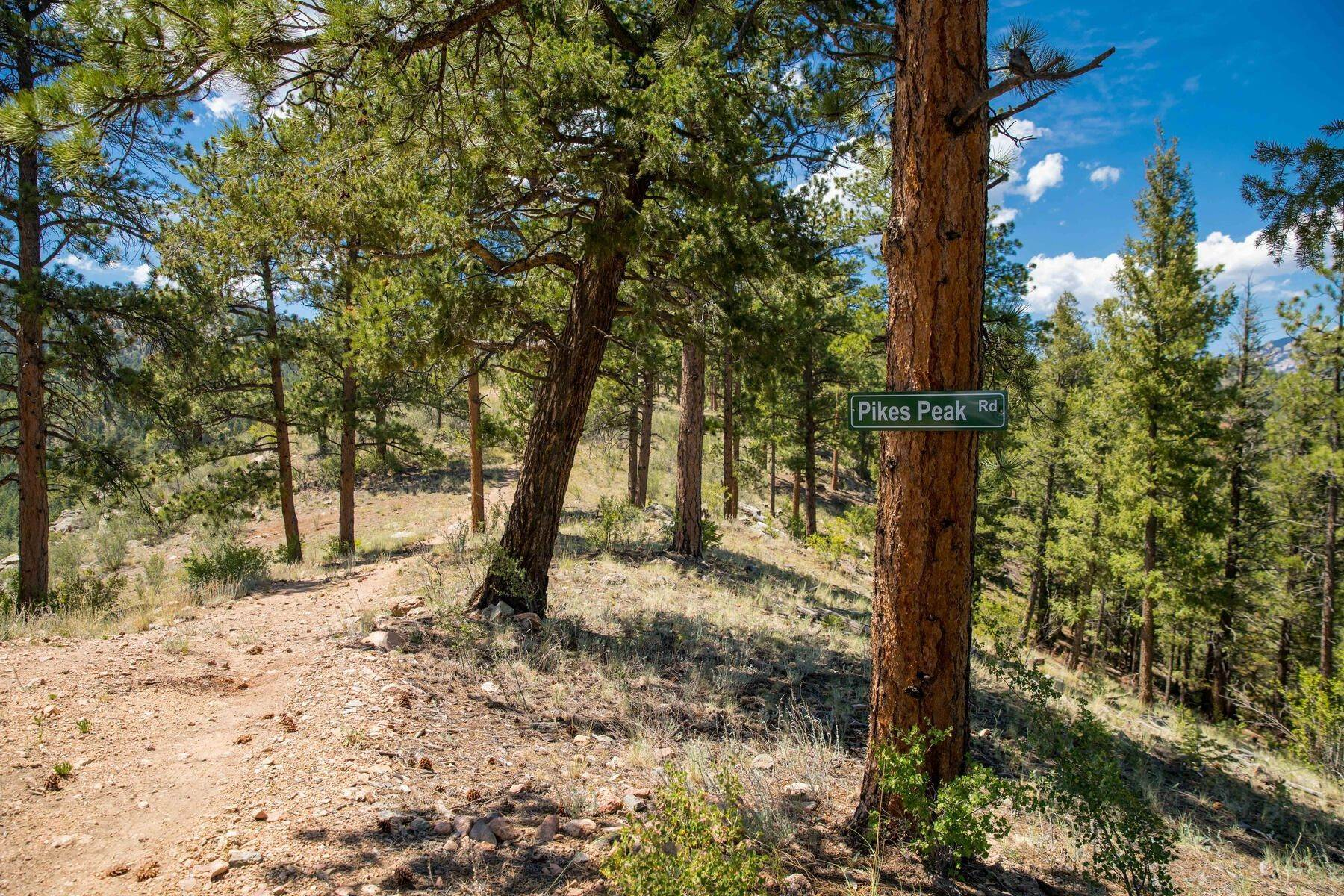 9. Land for Active at 14433 Lot 7 Elk Creek Road, Pine, Co, 80470 14433 Lot 7 Elk Creek Road Pine, Colorado 80470 United States