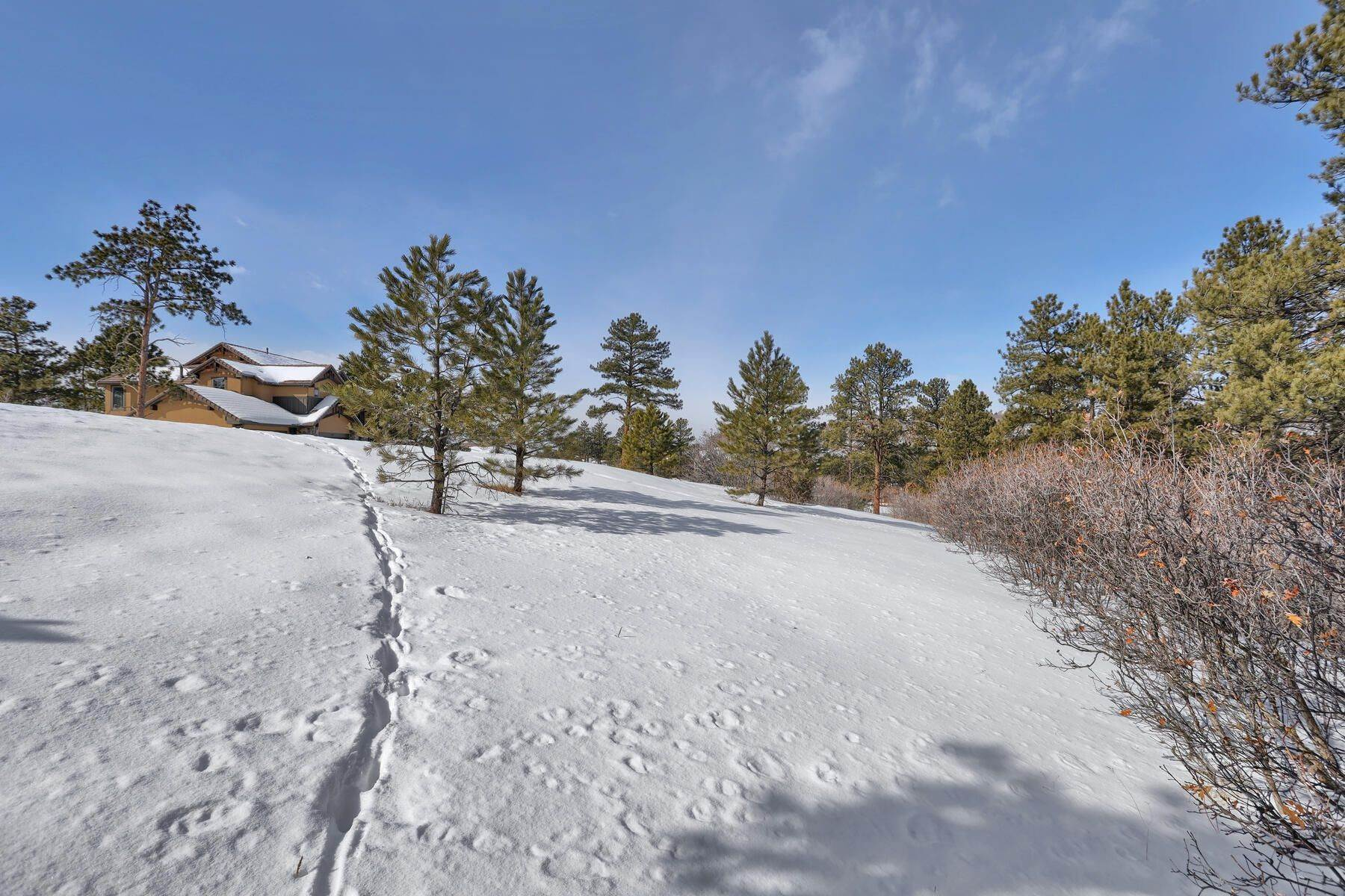 12. Land for Active at 1731 Avenida Del Sol, Castle Rock, Co, 80104 1731 Avenida Del Sol Castle Rock, Colorado 80104 United States
