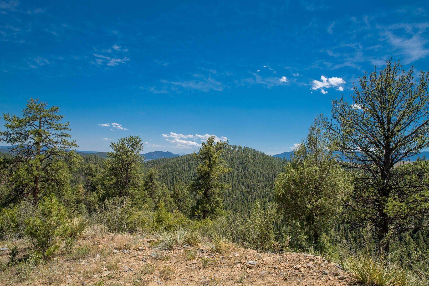Land for Active at 14433 Lot 1 Elk Creek Road, Pine, CO, 80470 14433 Lot 1 Elk Creek Road Pine, Colorado 80470 United States