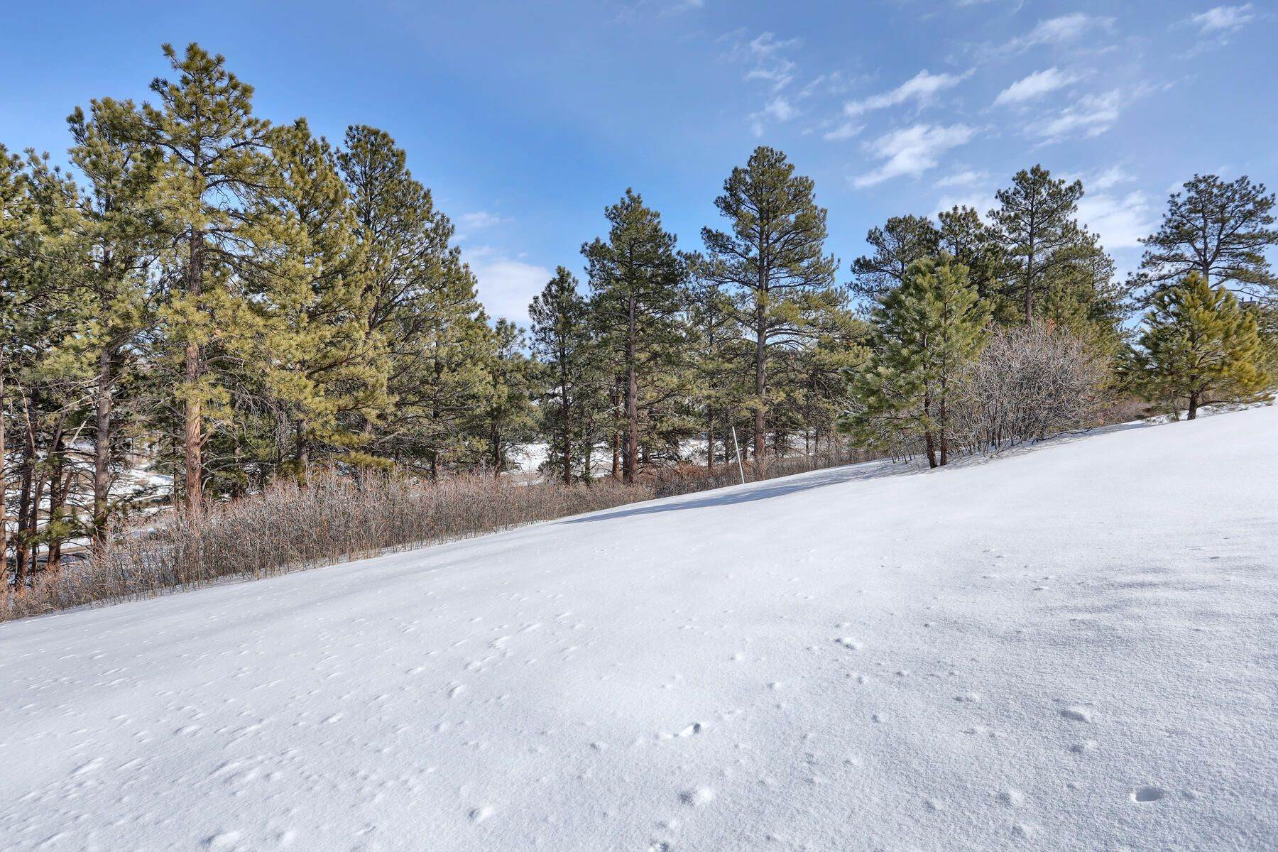 13. Land for Active at 1731 Avenida Del Sol, Castle Rock, Co, 80104 1731 Avenida Del Sol Castle Rock, Colorado 80104 United States