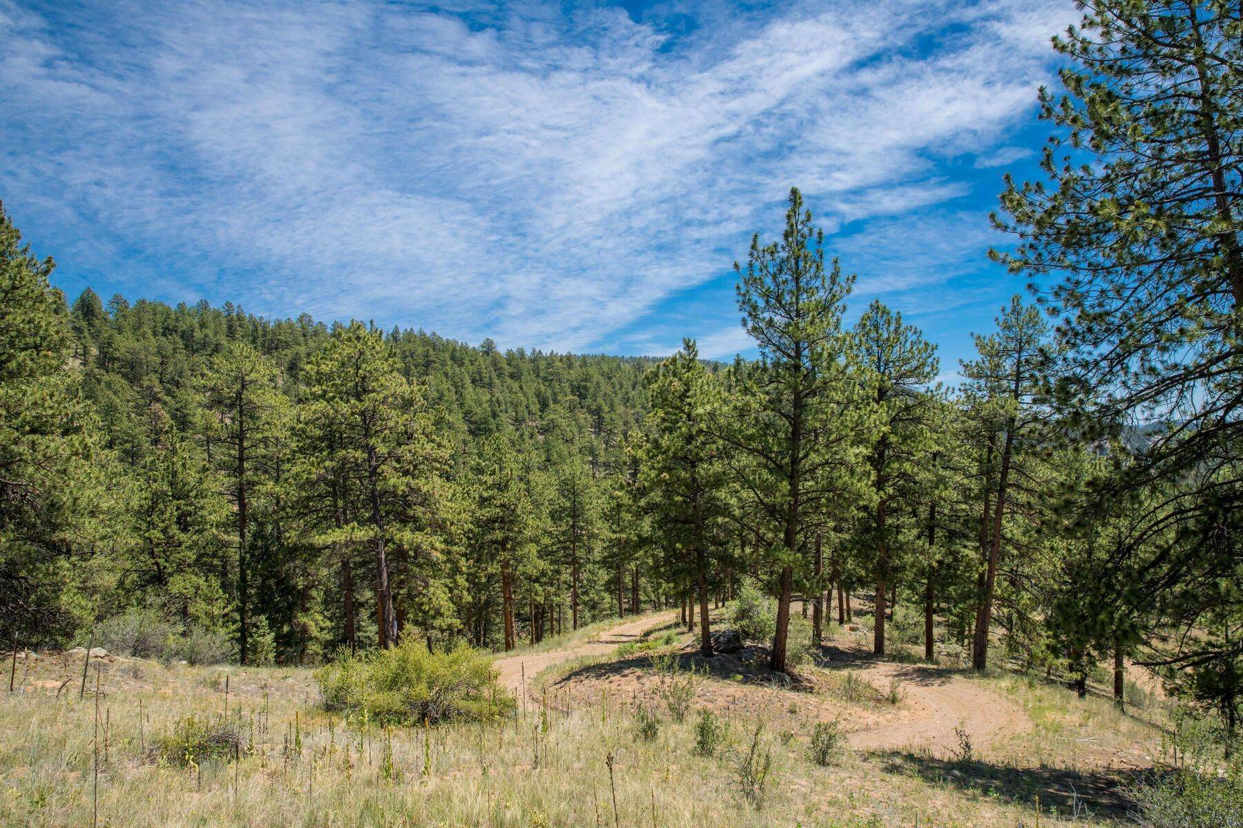 Land for Active at 14433 Lot 3 Elk Creek Road, Pine, Co, 80470 14433 Lot 3 Elk Creek Road Pine, Colorado 80470 United States