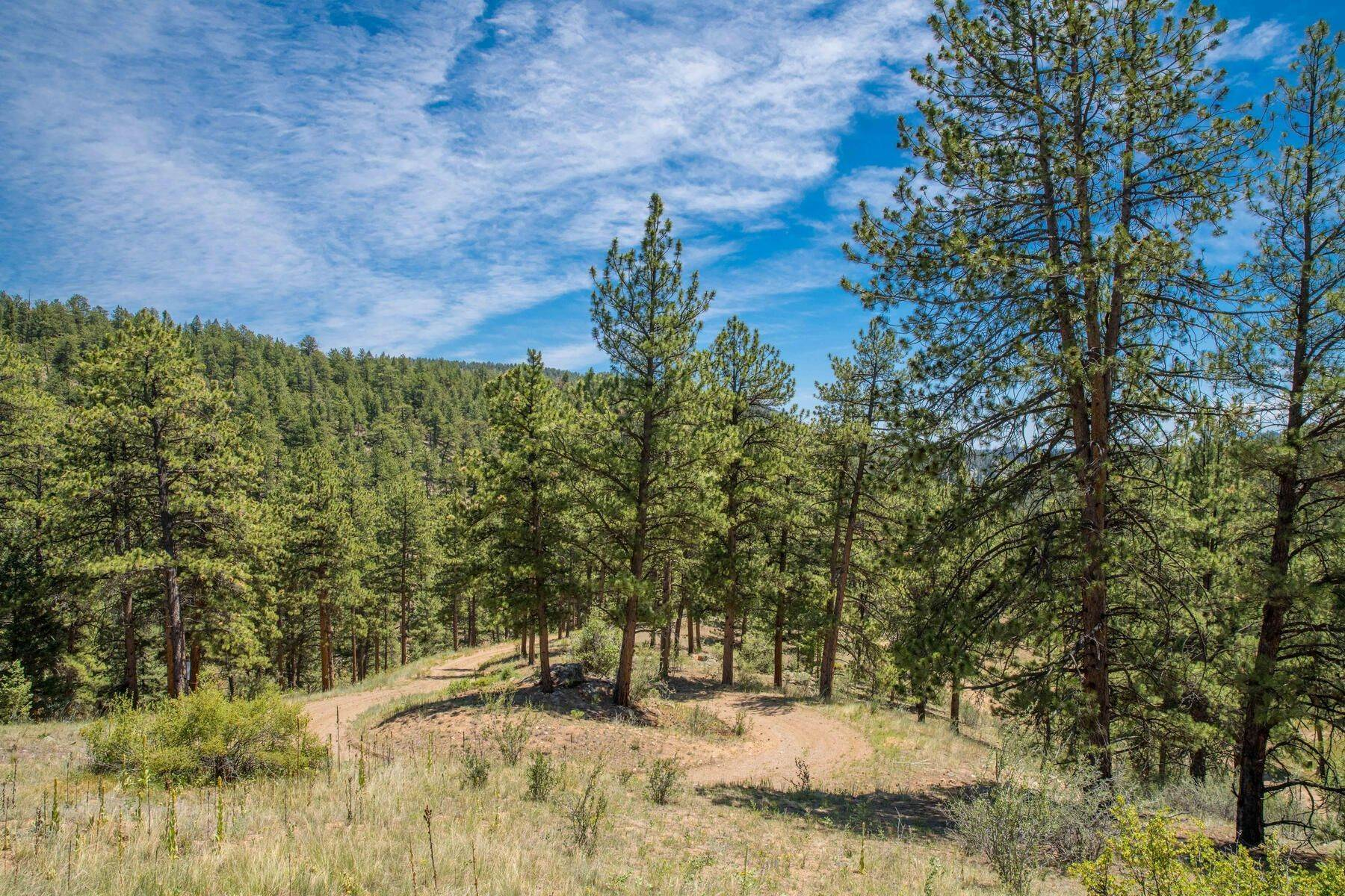 Land for Active at 14433 Lot 8 Elk Creek Road, Pine, Co, 80470 14433 Lot 8 Elk Creek Road Pine, Colorado 80470 United States
