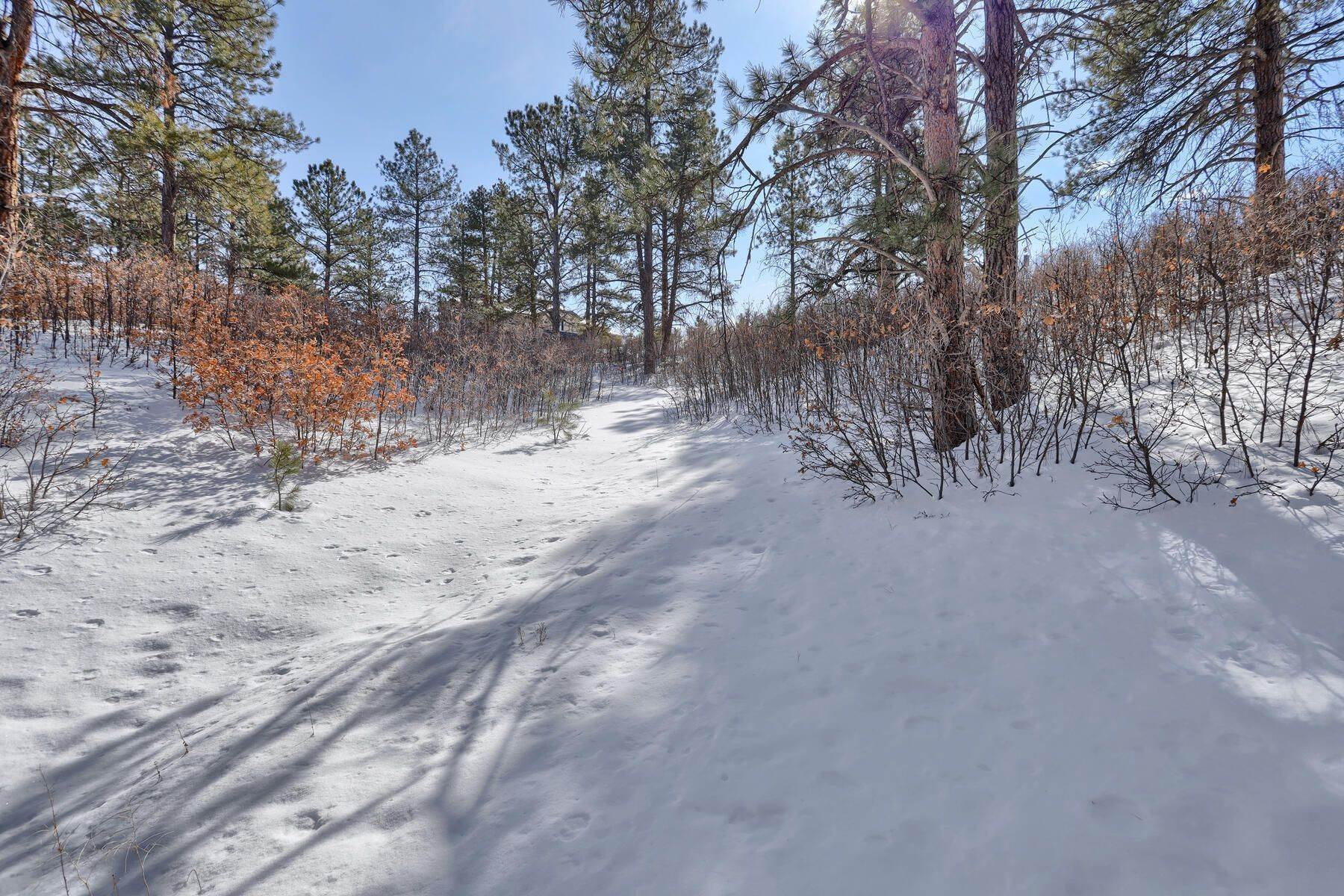 Land for Active at 1731 Avenida Del Sol, Castle Rock, Co, 80104 1731 Avenida Del Sol Castle Rock, Colorado 80104 United States
