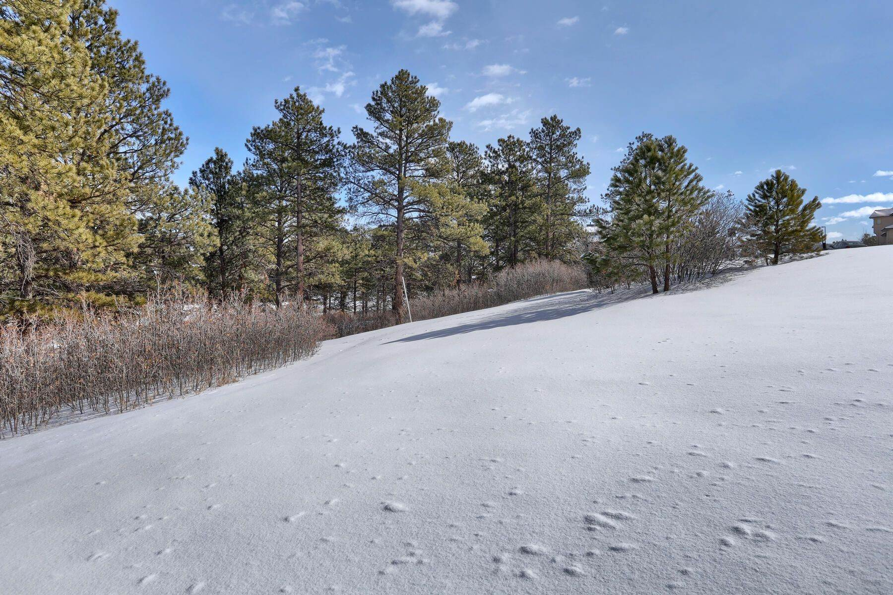 14. Land for Active at 1731 Avenida Del Sol, Castle Rock, Co, 80104 1731 Avenida Del Sol Castle Rock, Colorado 80104 United States