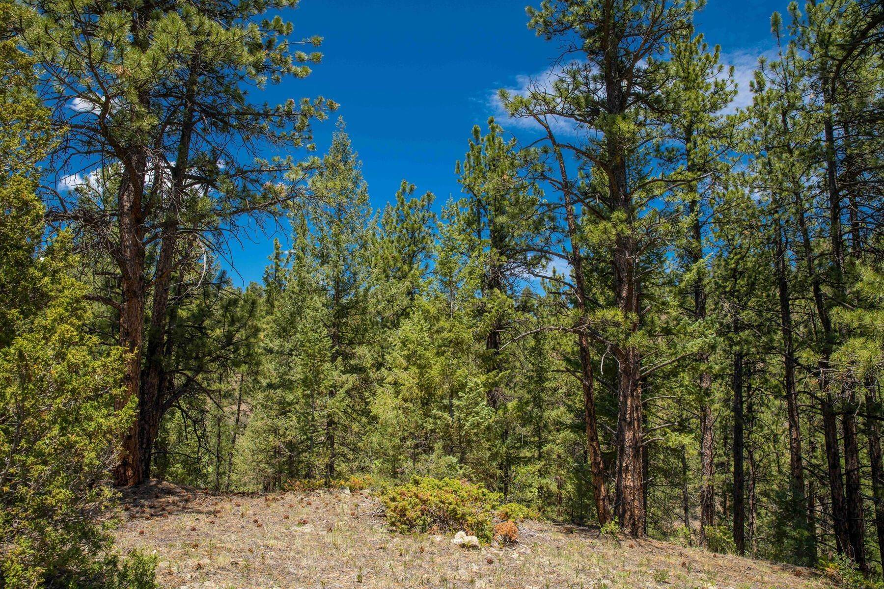 25. Land for Active at 14433 Lot 7 Elk Creek Road, Pine, Co, 80470 14433 Lot 7 Elk Creek Road Pine, Colorado 80470 United States