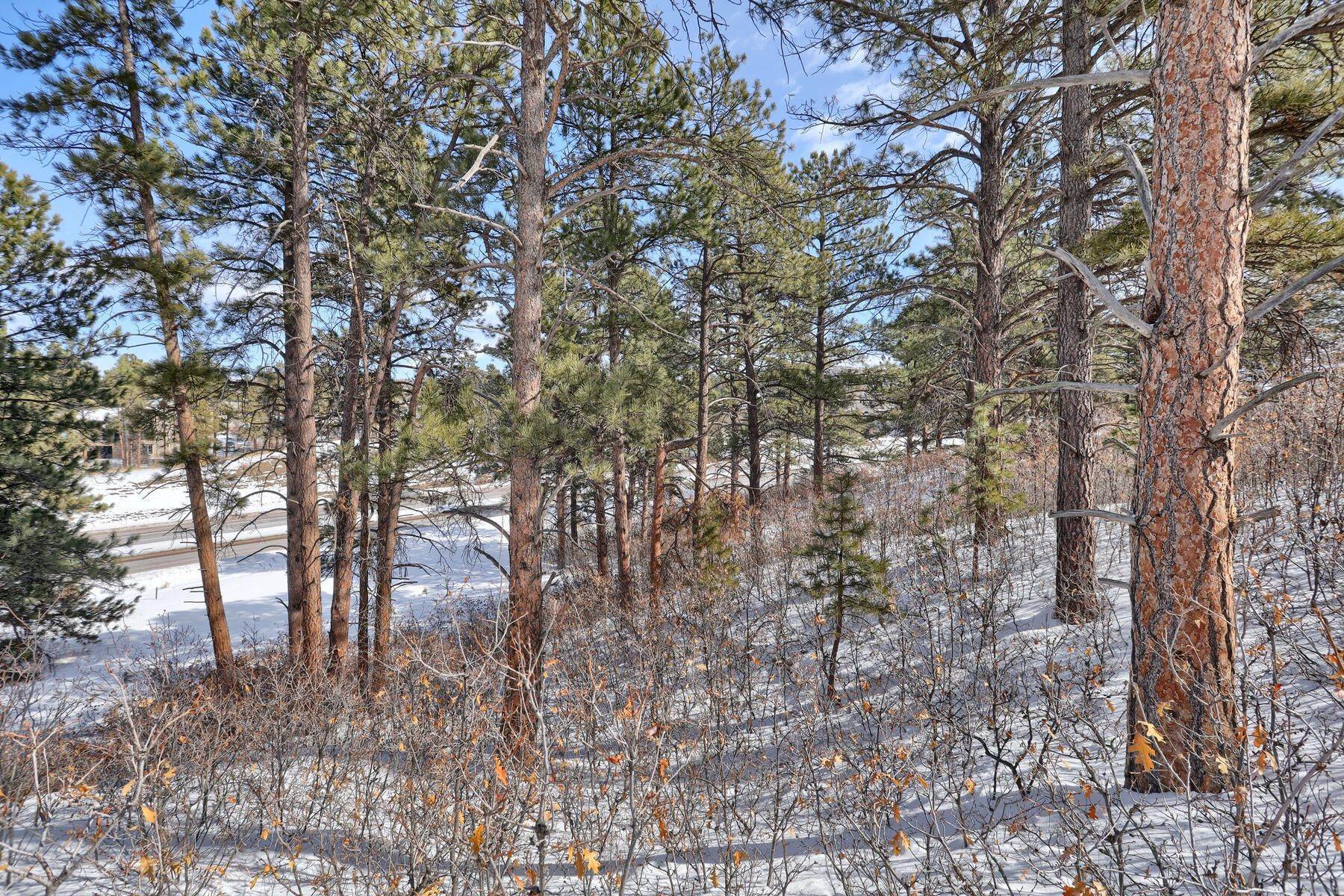 15. Land for Active at 1731 Avenida Del Sol, Castle Rock, Co, 80104 1731 Avenida Del Sol Castle Rock, Colorado 80104 United States