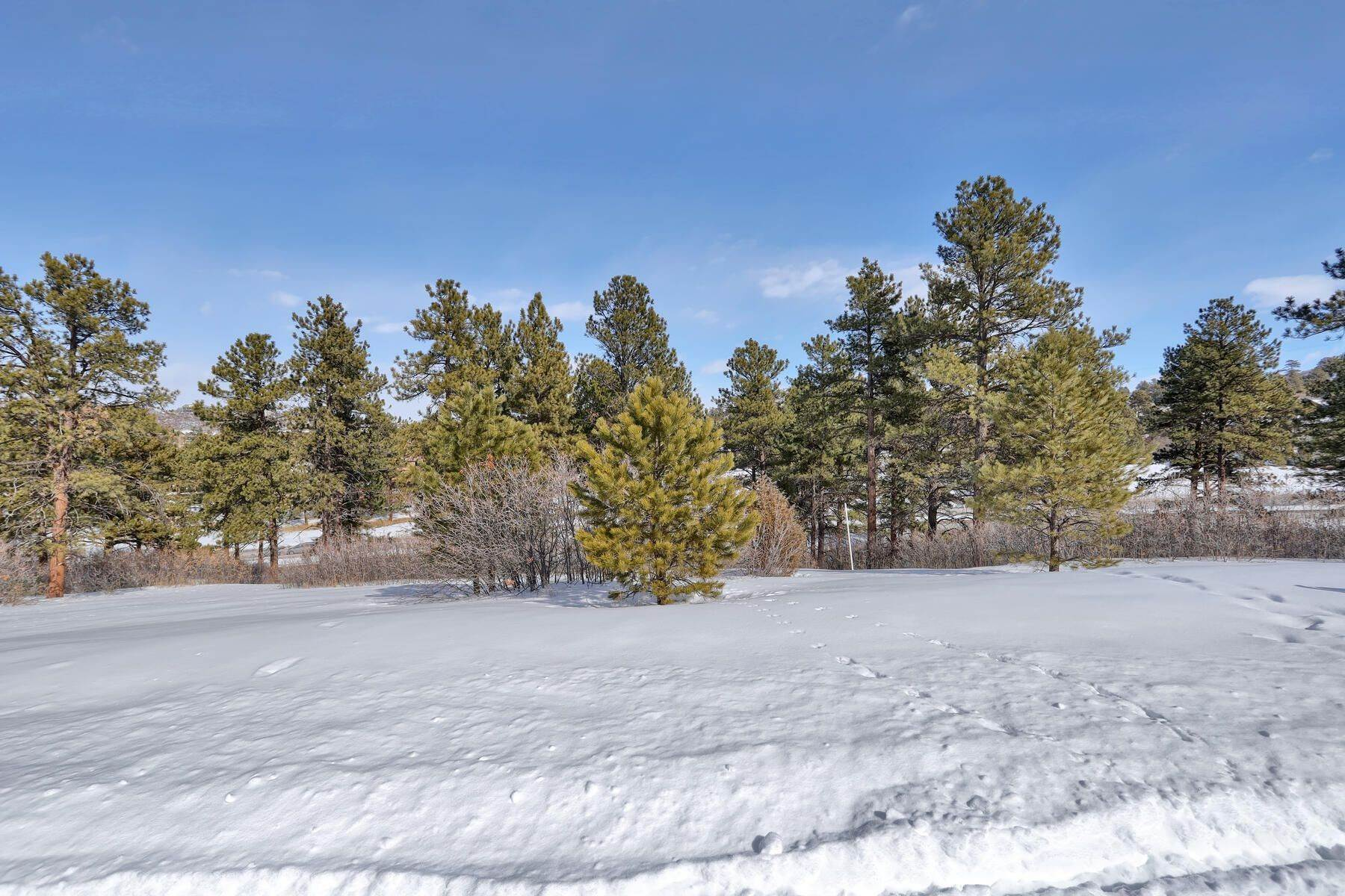 10. Land for Active at 1731 Avenida Del Sol, Castle Rock, Co, 80104 1731 Avenida Del Sol Castle Rock, Colorado 80104 United States