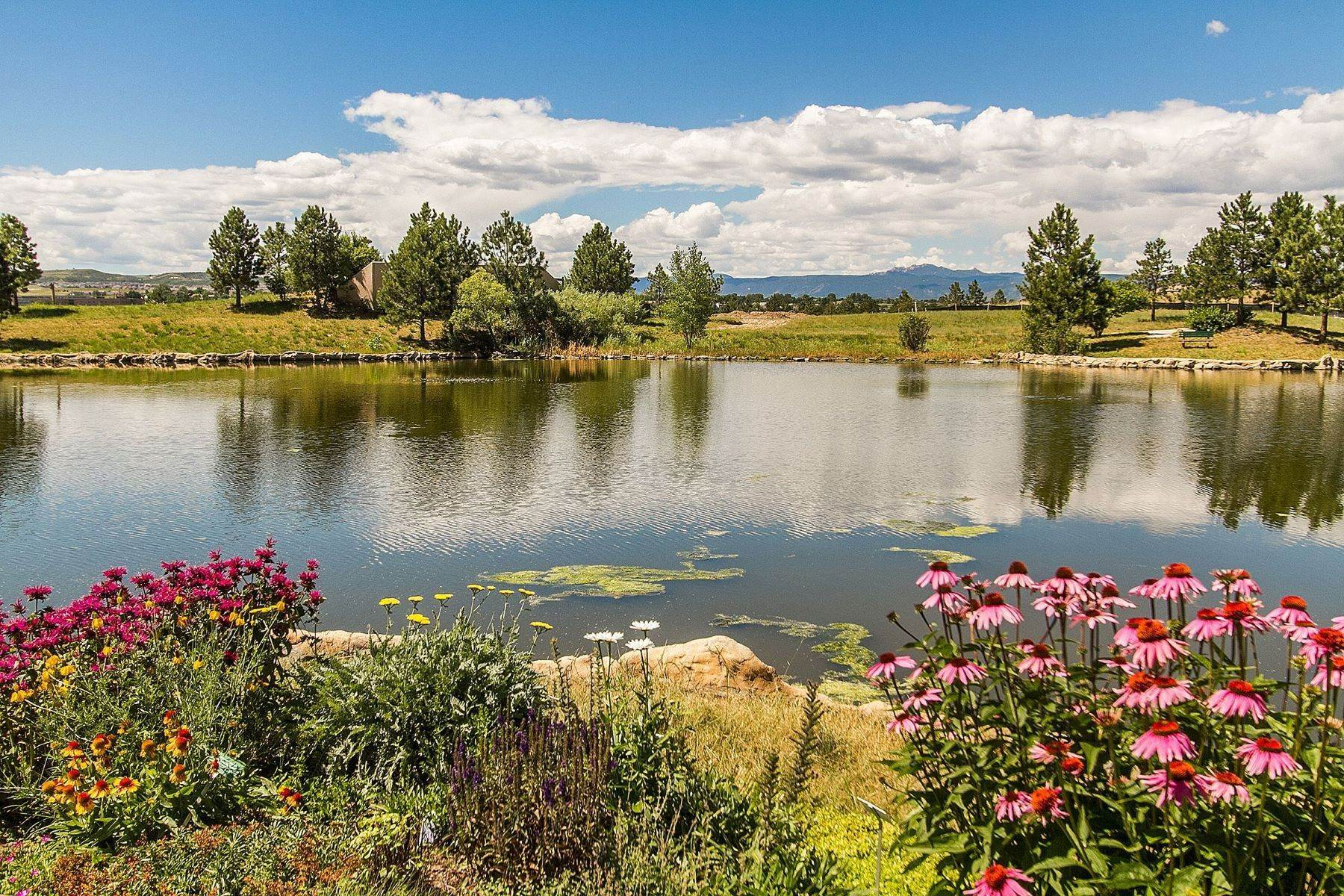 6. Single Family Homes for Active at 1138 Castle Pines Drive N, Castle Rock, Co, 80108 1138 Castle Pines Drive N Castle Rock, Colorado 80108 United States
